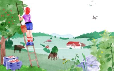 Protéger le paysage, préserver nos sols